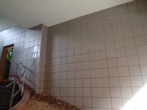 Vyčištěný obklad domu