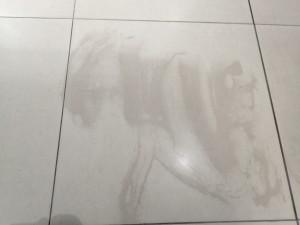 Keramická dlažba před čištěním